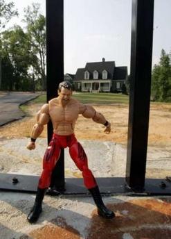 wrestling-action-figure.jpg